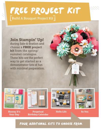 Starter kit free project kit