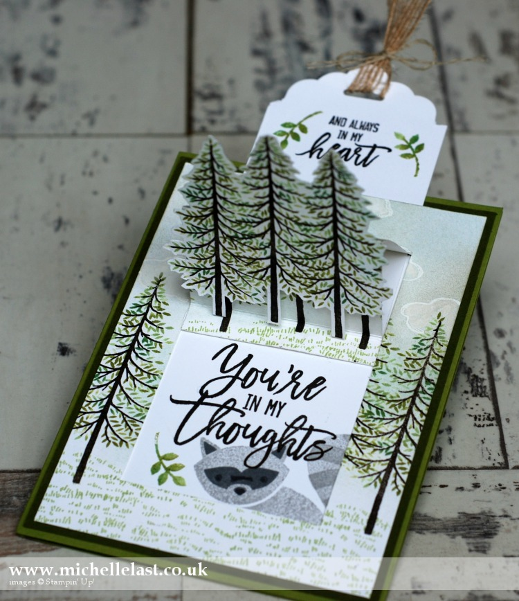 Thoughtful Branches POP UP Card & Foxy Friends