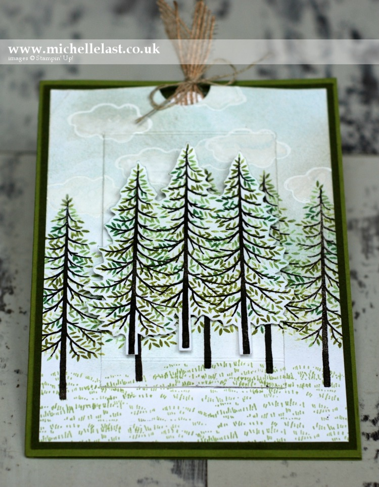 Thoughtful Branches from Stampin Up - For limited time!