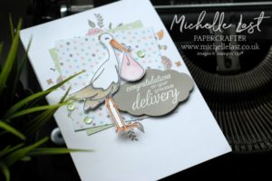 Baby Card Precious Delivery from Stampin Up