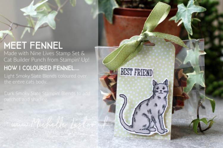 Nine Lives Cat Stamp Set