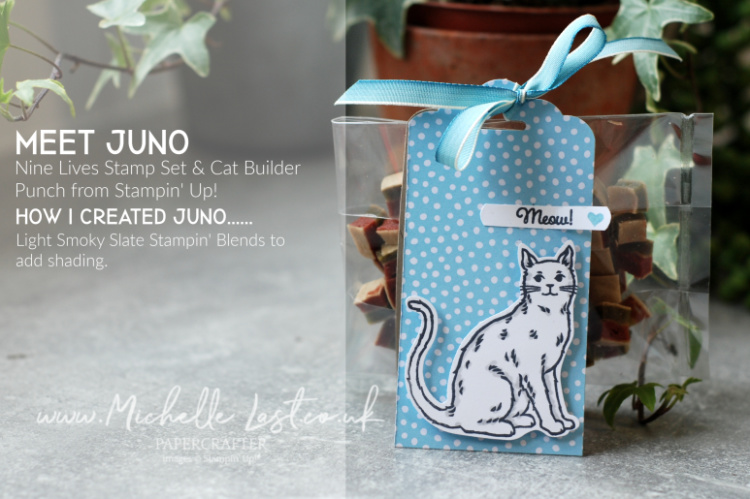Nine Lives from Stampin Up