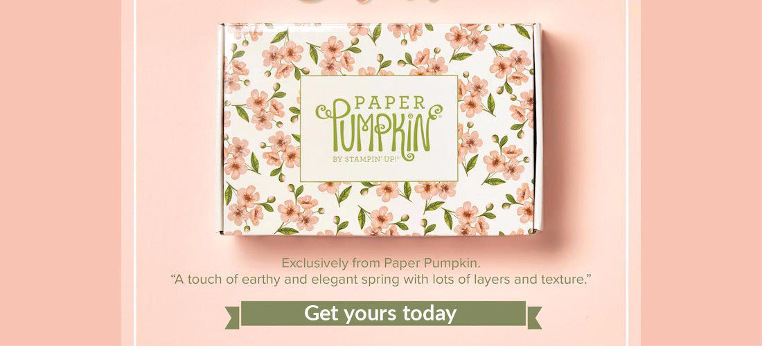 Paper Pumpkin So Shelli Kit Blog Banner